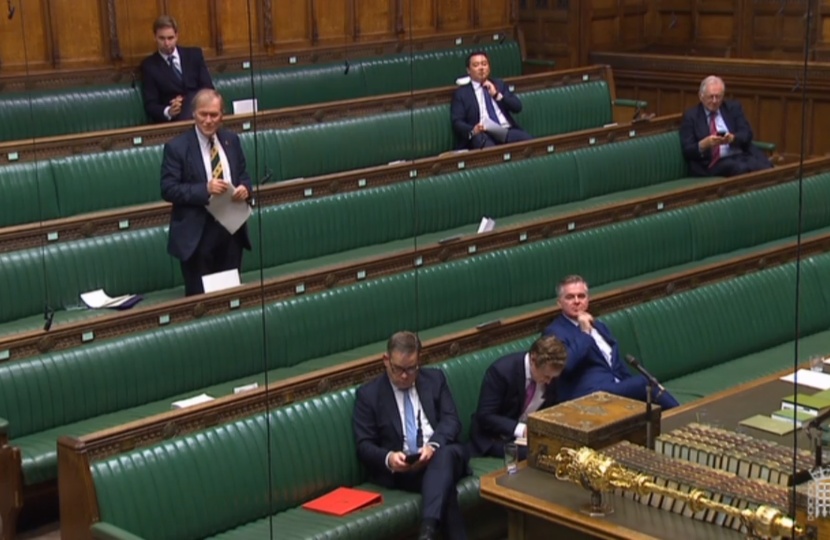 Southend MP speaks in Queen's Speech debate